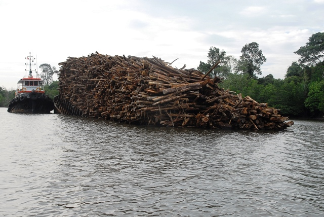 RAPP Barge Sinking with Full Load of Timber