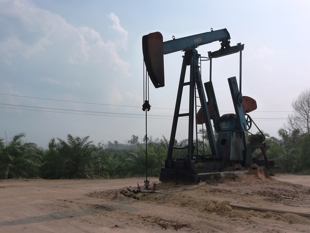 Landscape of Natural Resources Exploitation, Drilling Rig of Oil and Oil Palm Plantation