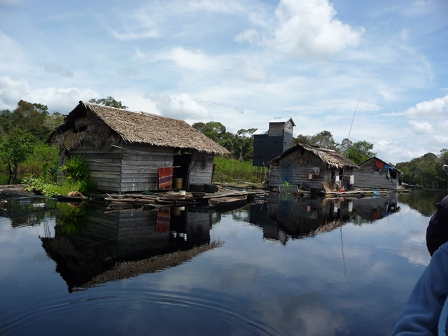 """Bagan"", Temporary Fishing House in Kerumutan"